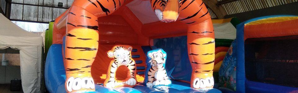 de tijger1